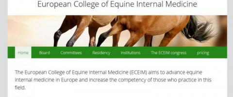 Screenshot of the ECEIM website